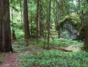 sigurd creek trail-1