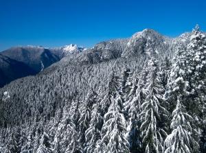 BCMC first snow-1