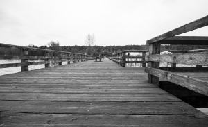 Rocky Point pier-2