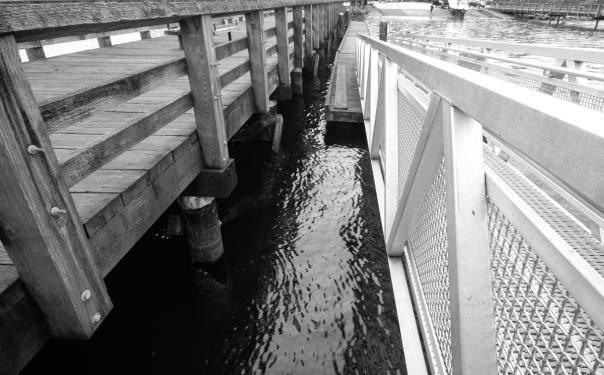 Rocky Point pier-3