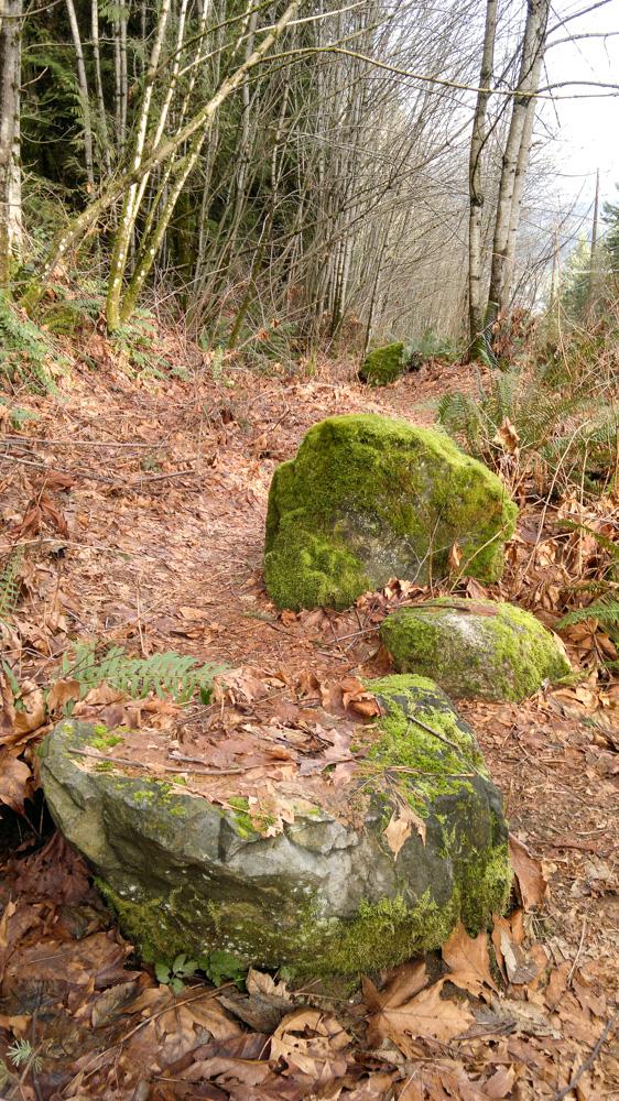 Green Rocks-2