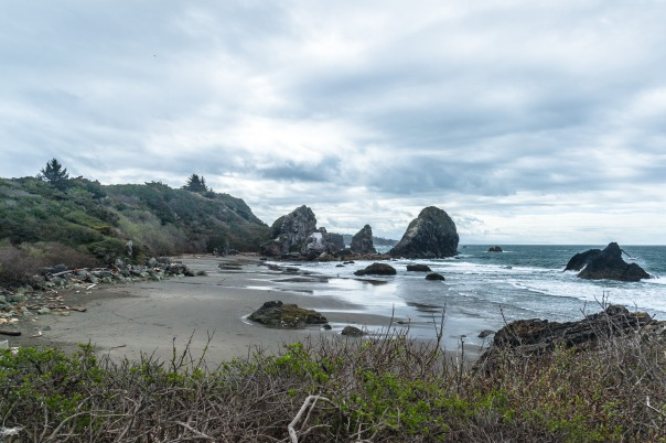 Oregon Coast-17