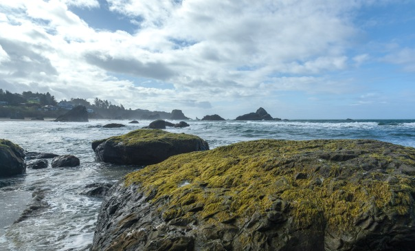 Oregon Coast-5