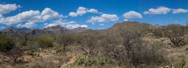 mountain desert pano-2